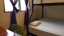 room 81