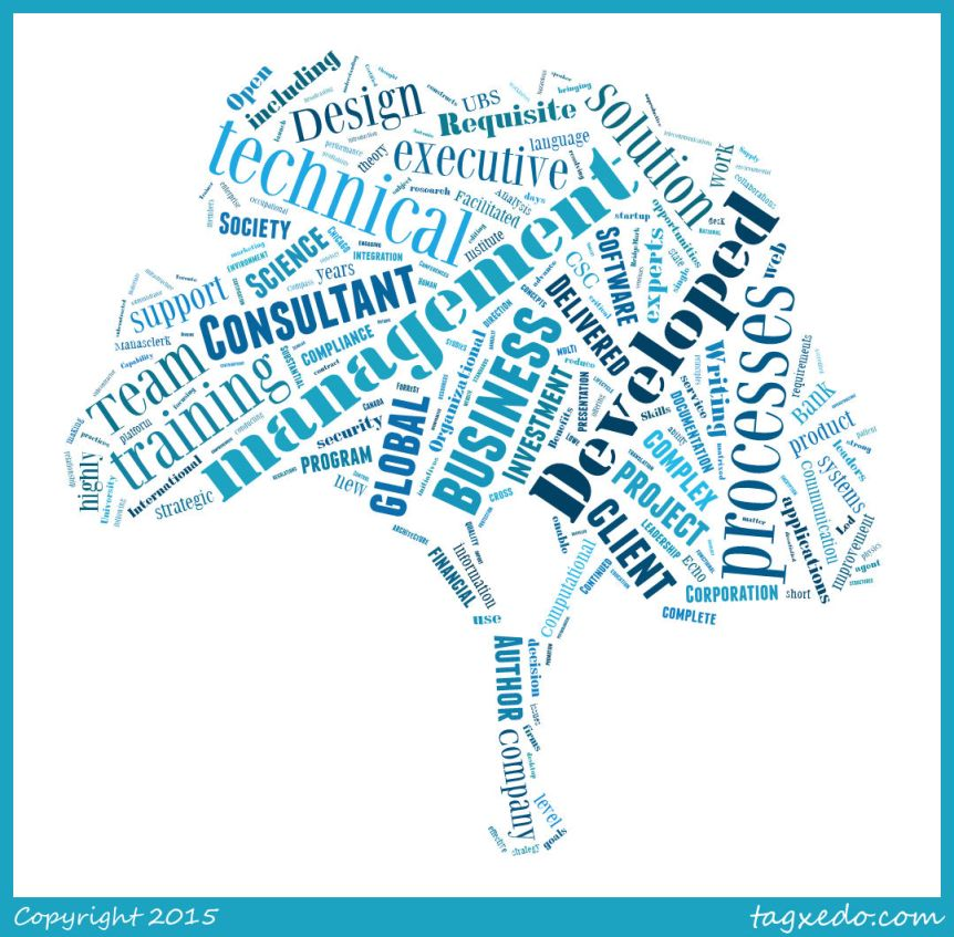Forrest's consulting bio, run through Tagxedo.com