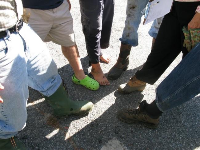 Manchaug Pond Foundation Events