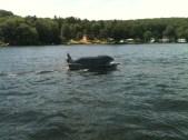 2012-BDC-Jaws-21