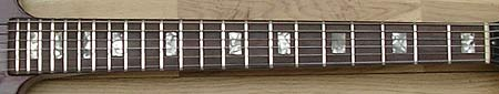 guitar neck showing the fretboard and nut