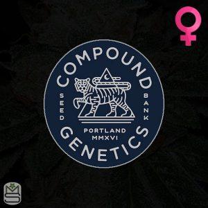 Compound Genetics – Stay Puft