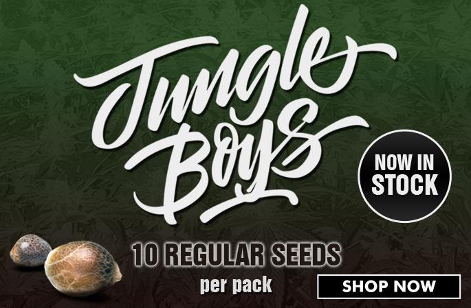 Slider - Jungle Boys