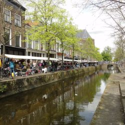 Flea Markets in Delft during Kingsday