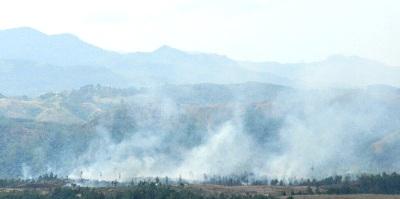 Lahan konsesi TPL di Simarsarasara yang terbakar. (foto : Metro Tabagsel/Amran Pohan)