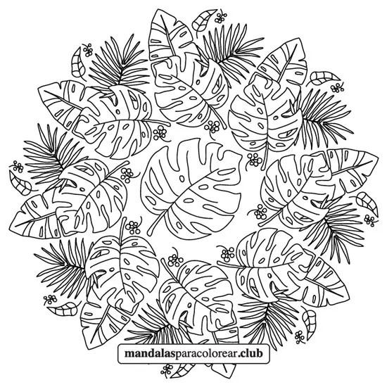 hojas tropicales