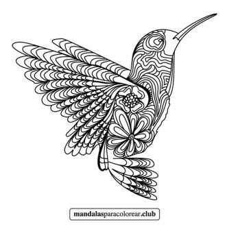 colibrí zentangle mandala
