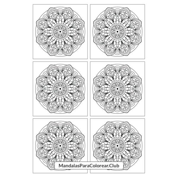 Mosaico de mandalas florales