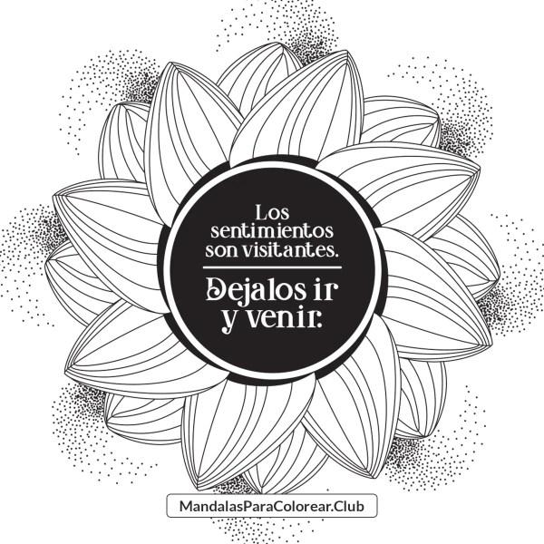 Mandala Zentangle Art Sentimientos