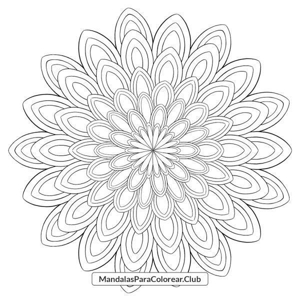 Mandala Multi Hojas