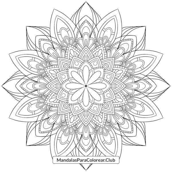 Mandala de Loto Otoño