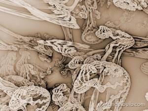 """""""Molasses Culture"""" 3D Fractal Art, By Matthew Haggett, 2012"""