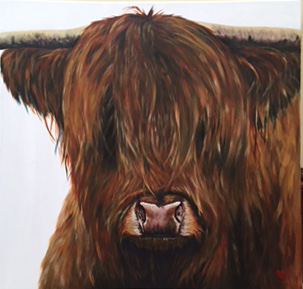 Billie - Highland bull