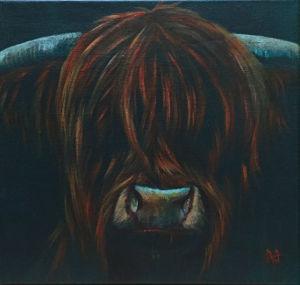 Mac - Highland bull