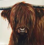 Meg - Highland cow