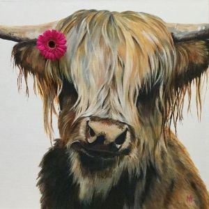 WillowDaisy - Highland cow