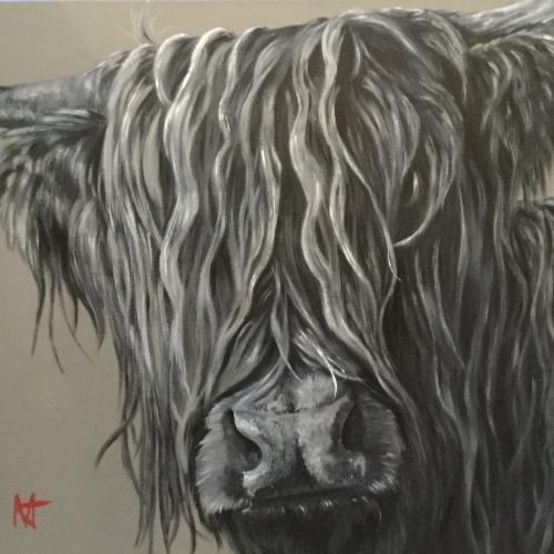 Morlich - Highland bull