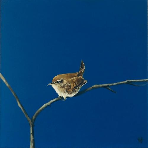 A wren on a branch