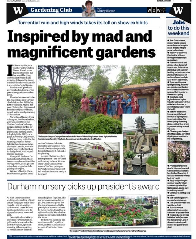 MandyCanUDigIt gardening page