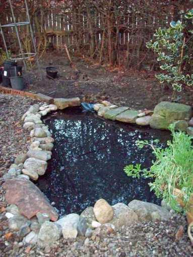 Finished pond