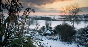 RHS Hyde Hall Garden, Essex. The Dry Garden in winter