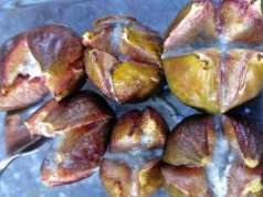 Baked fresh figs with blue cheese. Picture; Pascale Treichler from Lubera