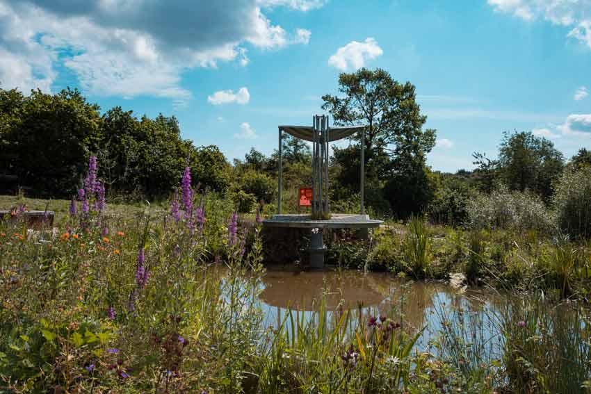The WWT Working Wetland Garden