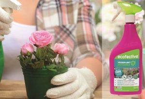 House Plant Defender