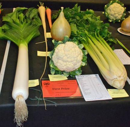 Mixed veg 1st