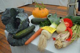 Shields Row Allotment Association's mixed veg