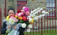 Sue hidden by flower haul