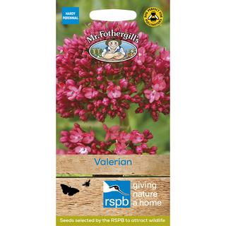 Mr Fothergill's RSPB Valerian seeds. Picture; Mr Fothergill's