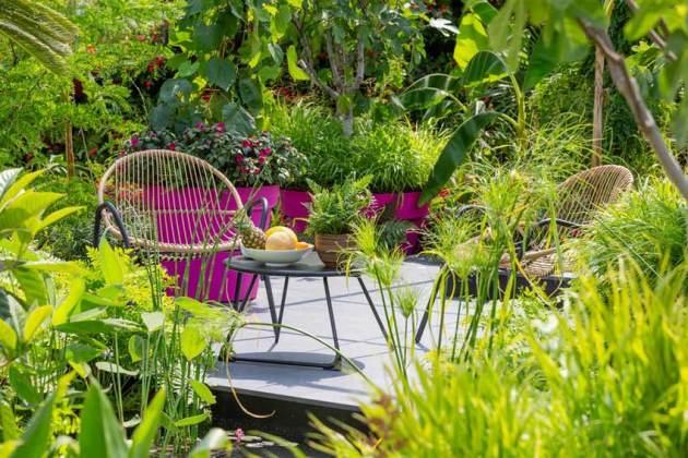 The B&Q Bursting Busy Lizzie Garden. Picture; RHS/Neil Hepworth
