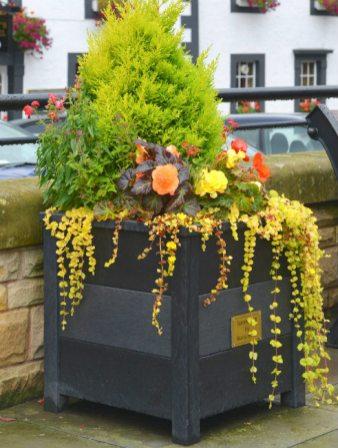 Ipstone planter. Picture; TDP