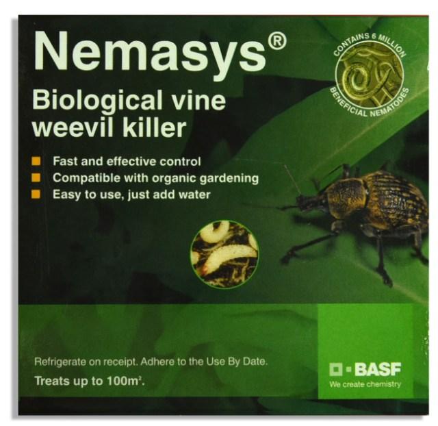 Biological Vine Weevil Killer. Picture; BASF