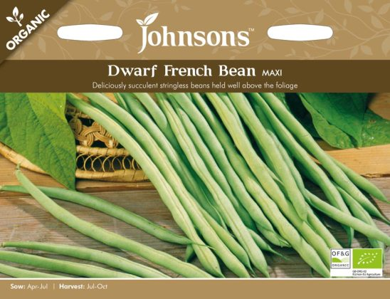 Dwarf French Bean Maxi (Organic). Picture; Johnsons