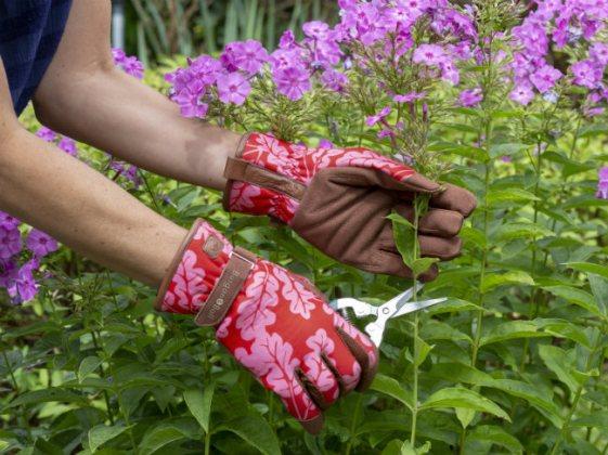 Love The Glove Oak Leaf in Poppy. Picture; Burgon & Ball