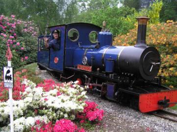 Steam train, Exbury Gardens, New Forest, Hampshire. Picture; Exbury Gardens