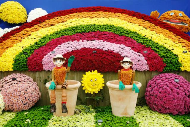 National Chrysanthemum Society New Design Award winner. Picture; RHS/Luke MacGregor
