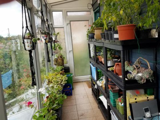 Conservatory shelving