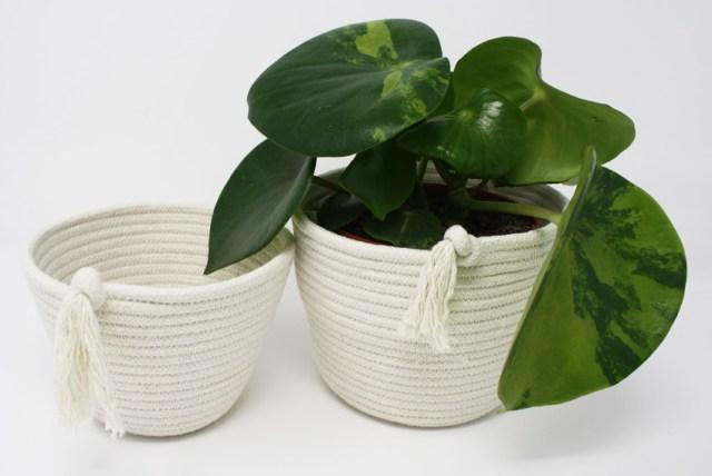 Cotton ECO-TWIST Plant Pots. Picture; Tabitha Eve