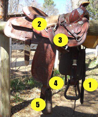 Parts of saddle quiz - Western saddle off side - Mane-U