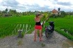 se déplacer en scooter à Bali