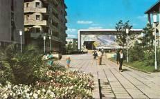 Mangalia-Casa-de-cultura-1966