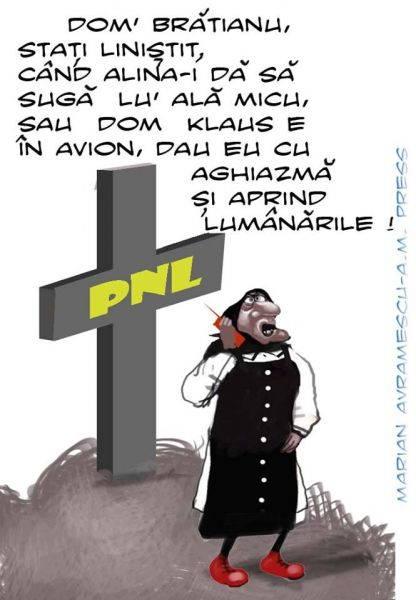 pnl-marian-avramescu