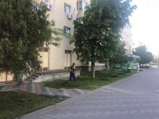 polaris-ziua-a-noua-05