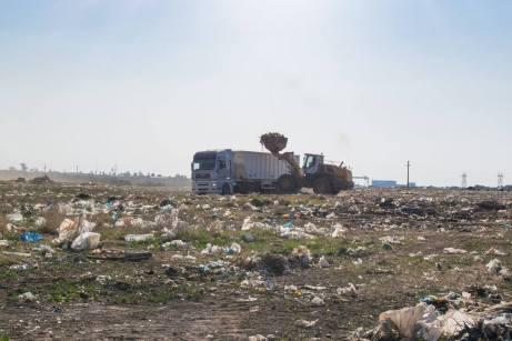 ecologizare-Limanu-02