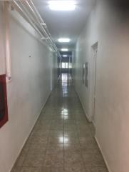 camine-liceu-pod5