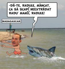 MAZAREMAD-mihai-matei