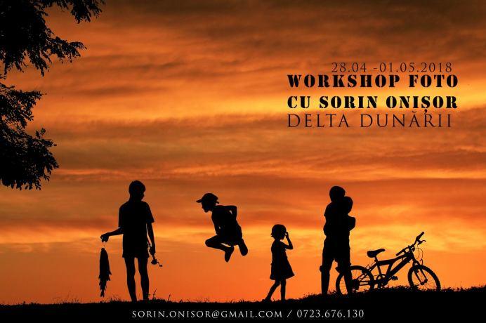 Sorin Onisor Workshop Delta
